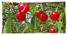 Perry's Cherry Image Hand Towel by Perry Andropolis