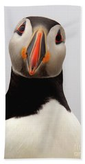 Peter The Puffin Hand Towel by Jane Axman
