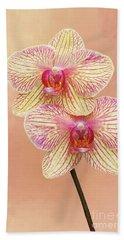 Phalaenopsis Moth Orchids #2 V2 Hand Towel
