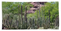 Phoenix Botanical Garden Bath Towel