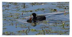 Pied Billed Grebe Lake John Swa Co Hand Towel