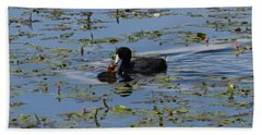 Pied Billed Grebe Lake John Swa Co Hand Towel
