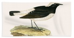 Pied Wheatear Hand Towel by English School