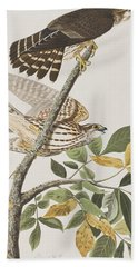 Pigeon Hawk Hand Towel by John James Audubon