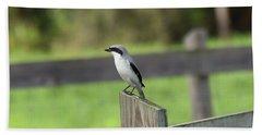 Pigeon-toed Shrike Bath Towel
