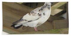 Pigeon Under Daytona Beach Pier  Bath Towel