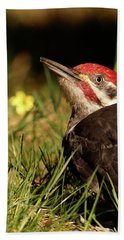 Pileated Woodpecker Hand Towel