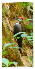 Bath Towel featuring the photograph Pileated Woodpecker by Sean Griffin