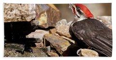 Pileated Woodpecker2 Bath Towel by Loni Collins