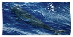 Pilot Whale 4 Bath Towel