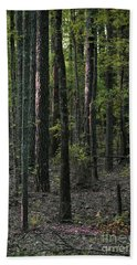Bath Towel featuring the photograph Pine Wood Sunrise by Skip Willits