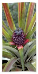 Pineapple, Oahu Bath Towel