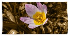 Pink And Yellow Tulip On Sepia Background Hand Towel