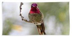 Pink Anna's Hummingbird Bath Towel