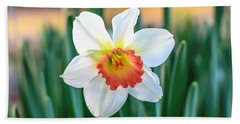Pink Cup Solo Daffodil Hand Towel