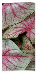 Pink Elephant Ears Closeup Bath Towel by Patricia Strand
