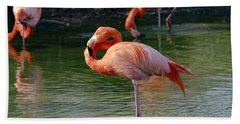 Hand Towel featuring the photograph Pink Flamingo by Scott Carruthers