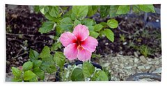 Pink Hibiscus And Wheel Hand Towel
