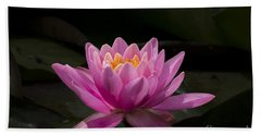 Pink Lotus Hand Towel