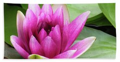 Hand Towel featuring the photograph Pink Lotus Flower by Betty Denise