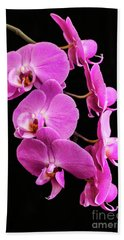 Pink Orchid With Black Background Bath Towel