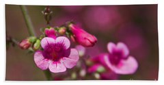 Pink Parry's Penstemon  Bath Towel