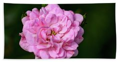 Pink Rose Petals Hand Towel