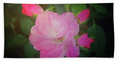 Pink Roses  Bath Towel by Inspirational Photo Creations Audrey Woods