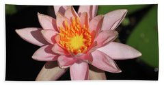 Bath Towel featuring the photograph Pink Water Lily 2016 by Suzanne Gaff