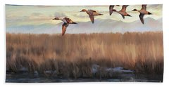 Pintail Fly By Bath Towel by Rob Corsetti