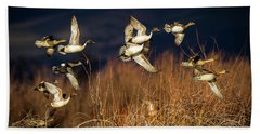 Pintails And Wigeons Hand Towel