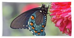 Pipevine Swallowtail Butterfly Hand Towel