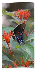 Pipevine Swallowtail Butterfly On Firebush Bath Towel