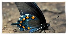 Pipevine Swallowtail Close-up Bath Towel