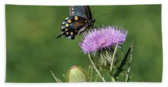 Bath Towel featuring the photograph Pipevine Swallowtail by Sandy Keeton