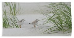 Piping Plovers Bath Towel