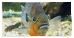 Piranha Behind Glass Bath Towel