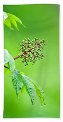 Elderberry In Rain Hand Towel