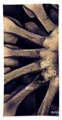 Plantains 2  Sepia Hand Towel by Sarah Loft