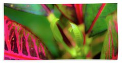 Bath Towel featuring the photograph Plants In Hawaii by D Davila