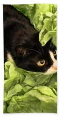 Playful Tuxedo Kitty In Green Tissue Paper Hand Towel by Kathy Clark