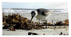Plover On Daytona Beach Bath Towel by Chris Mercer