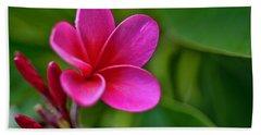 Plumeria - Royal Hawaiian Hand Towel
