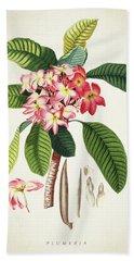 Plumeria Botanical Print Bath Towel