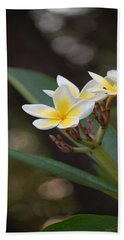 Plumeria II Bath Towel by Robert Meanor