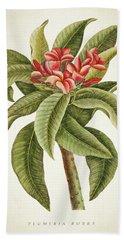 Plumeria Rubra Botanical Print Bath Towel