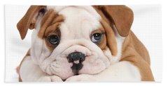 Po-faced Bulldog Bath Towel