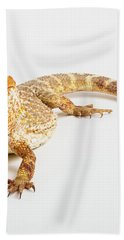 Pogona Isolated Bath Towel
