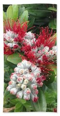 Pohutukawa Flowers  Hand Towel