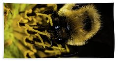 Hand Towel featuring the photograph Pollen Collector 2 by Jay Stockhaus